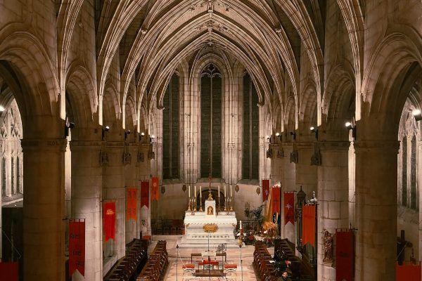 03 01 2019 church view from the organ